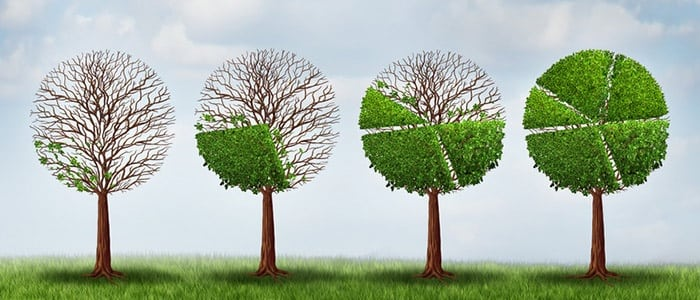 How to Incorporate Content in Landscape Marketing
